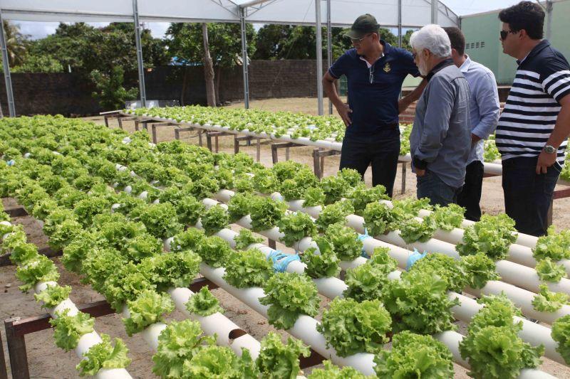 Projeto de Hidroponia Social recebe visita de prefeito sergipano