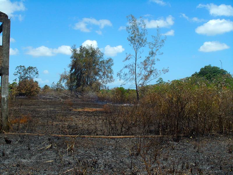 Prefeitura de Eusébio alerta que queimada é crime ambiental e pode gerar detenção e multa